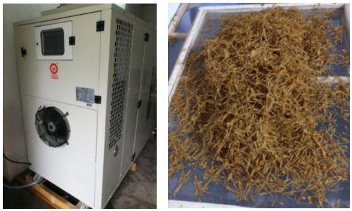 高溫熱泵竹筍烘幹項目
