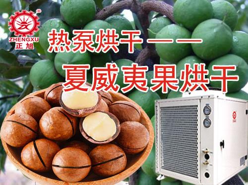 夏威夷果高温热泵烘干机