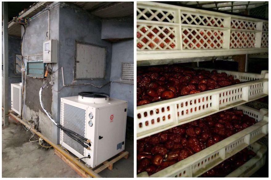 18岁禁止草莓深夜释放自己空氣能熱泵紅棗烘幹機項目