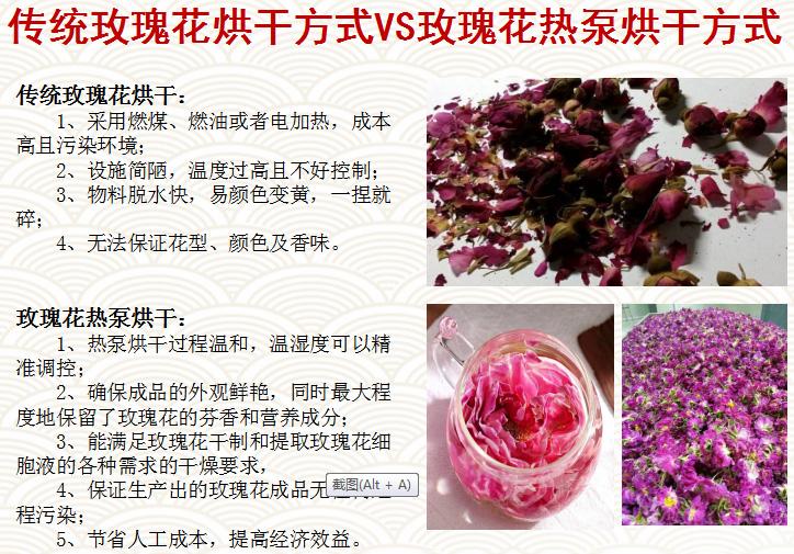 传统玫瑰花烘干与热泵烘干的对比