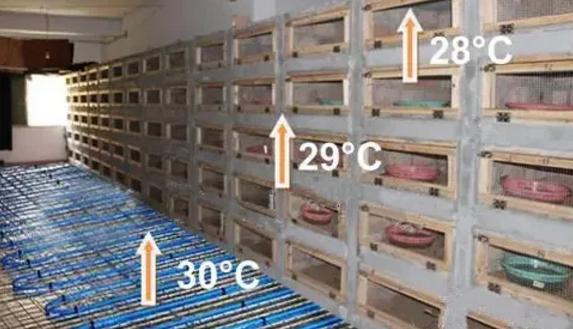 【收藏】最佳无冬眠养蛇技术分享——正旭空气能蛇房保暖指南